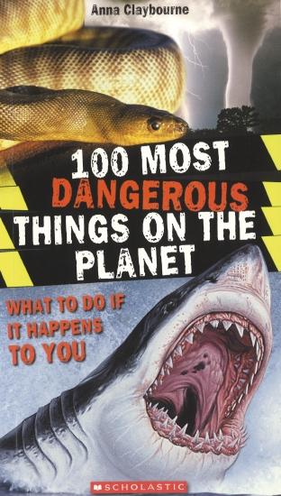 100 MOST DANGEROUS THINGS PLAN