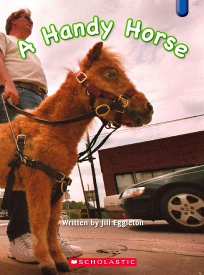 Key Links Blue 14: A Handy Horse                                                                    - Book
