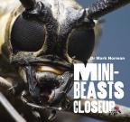 MINI BEASTS CLOSE UP