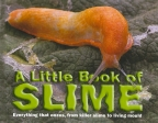 Little Book of Slime