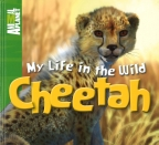 CHEETAH MY LIFE IN THE WILD