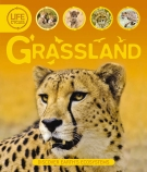 GRASSLAND LIFE CYCLES