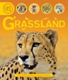 GRASSLANDS LIFE CYCLES