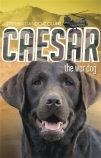 Caesar the War Dog