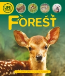 Life Cycles: Forests