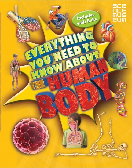 Image result for everything you need to know about the human body book