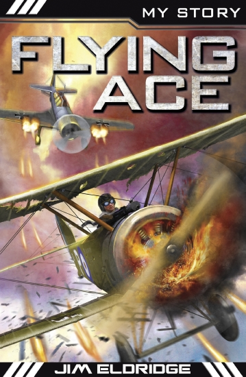 My Story War Heroes: Flying Ace                                                                      - Book