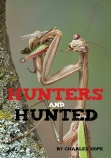 Hunters and Hunted