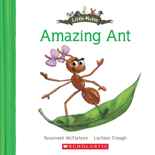 Little Mates: Amazing Ant