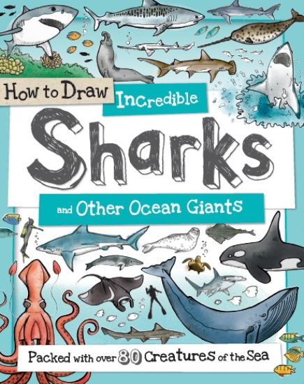 How to Draw Incredible Sharks