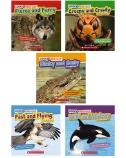 Look & Find Out Predators 5-Pack