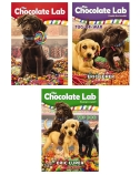 Chocolate Lab 3 Pack