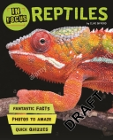 In Focus: Reptiles