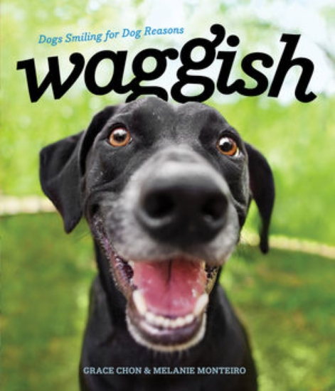 Waggish