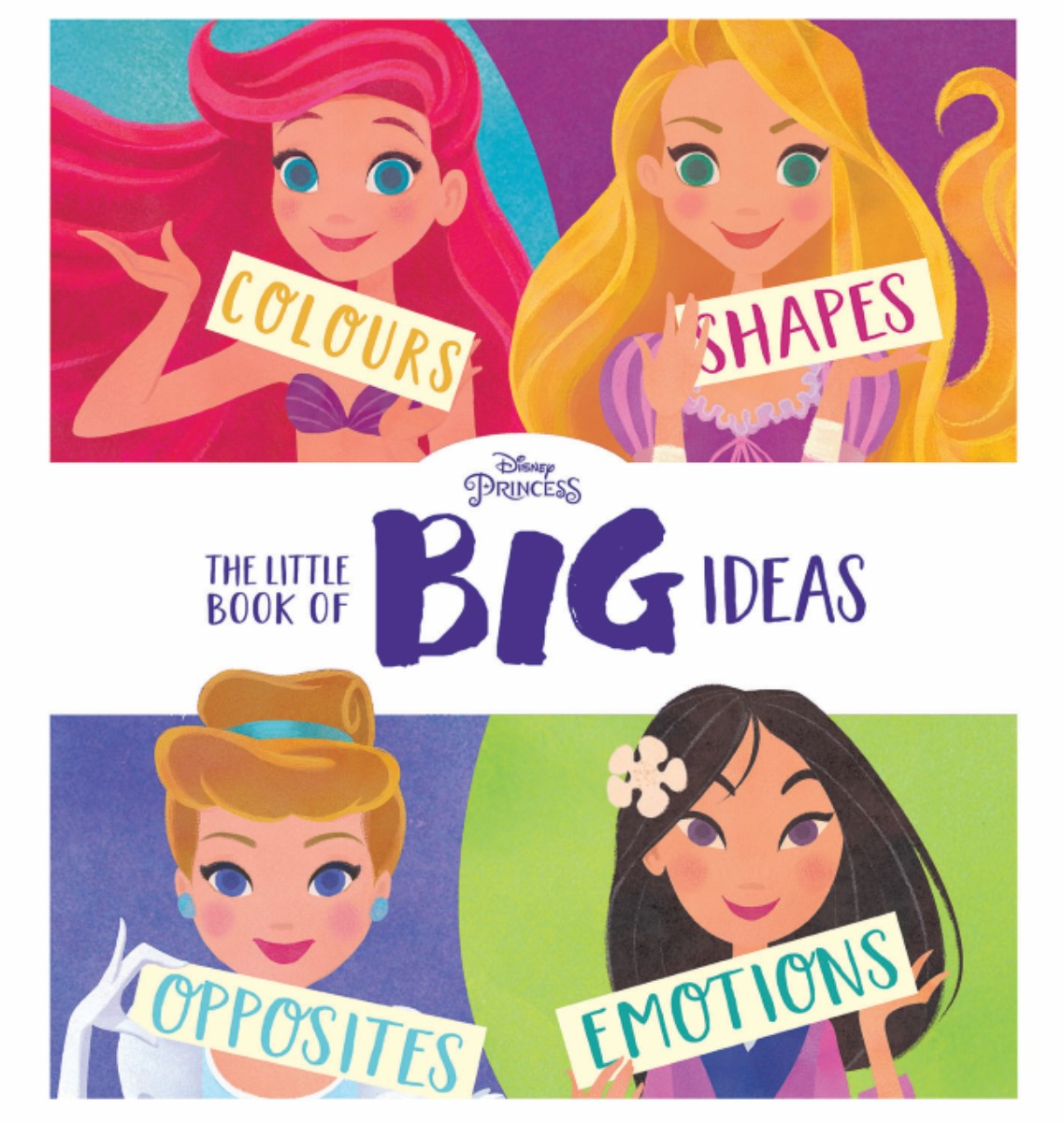 The Little Book of Big Ideas (Disney Princess)